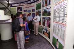 orientation on seed village