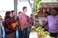 participants interaction